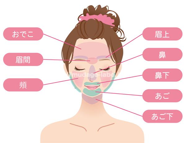 顔脱毛の範囲