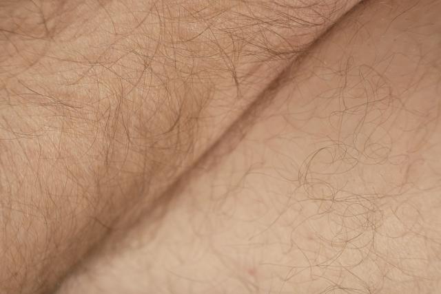 体毛 濃い