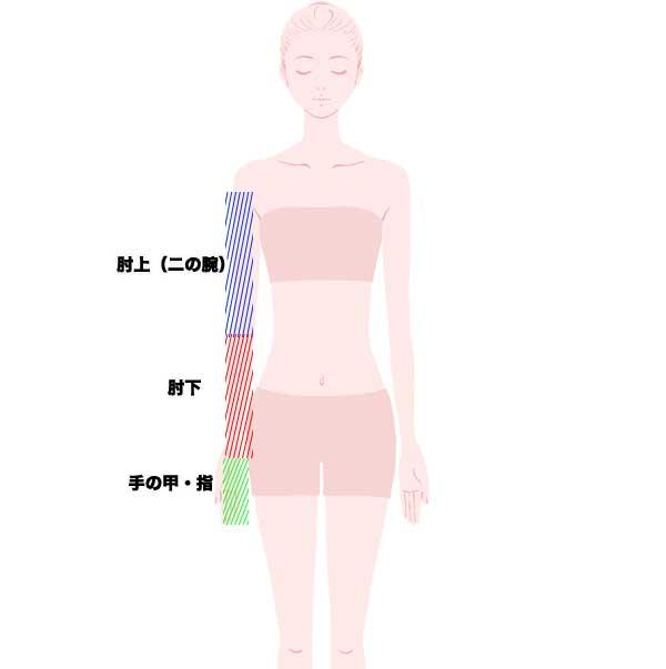 腕脱毛の範囲